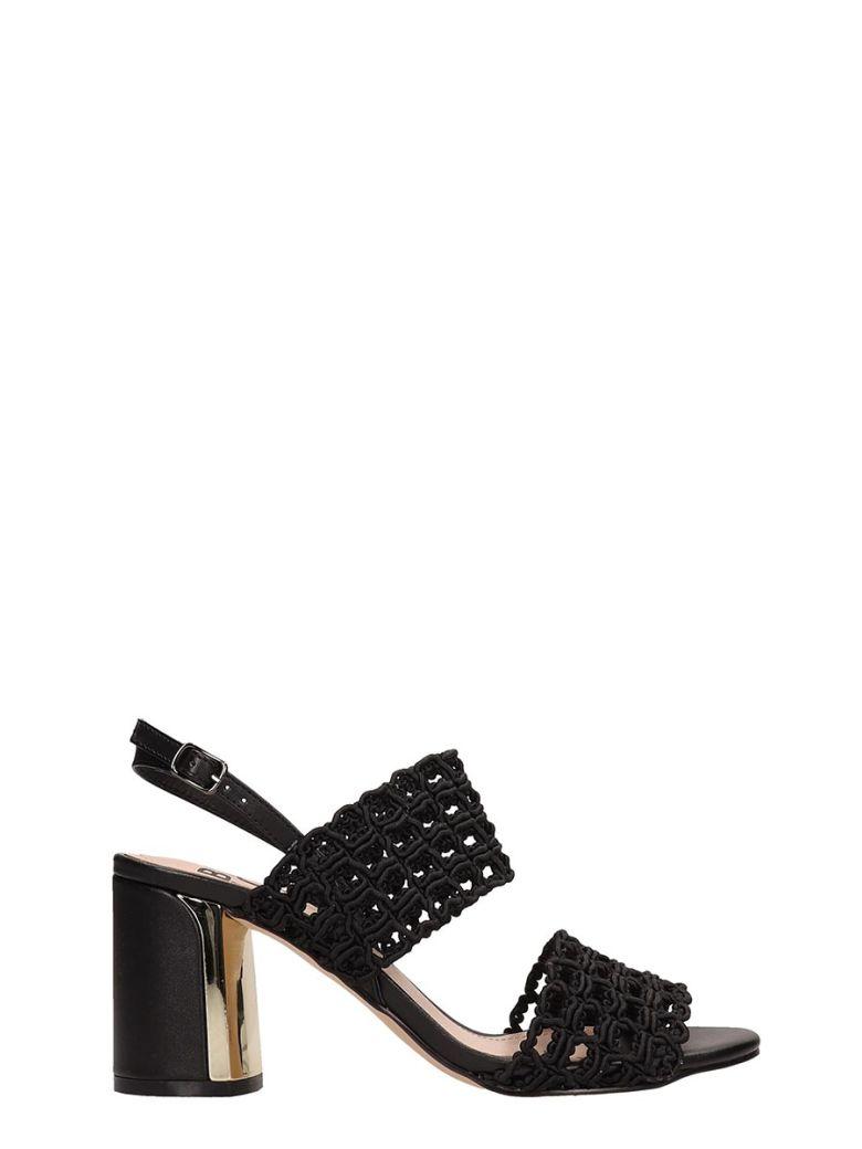 Bibi Lou Black Canvas Sandals - Black