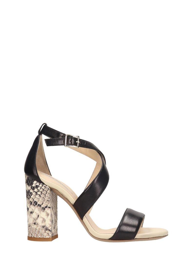 Fabio Rusconi Sandals In Black Leather - black