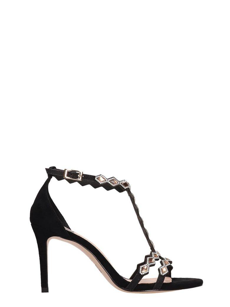 Bibi Lou Black Suede Sandals - Black