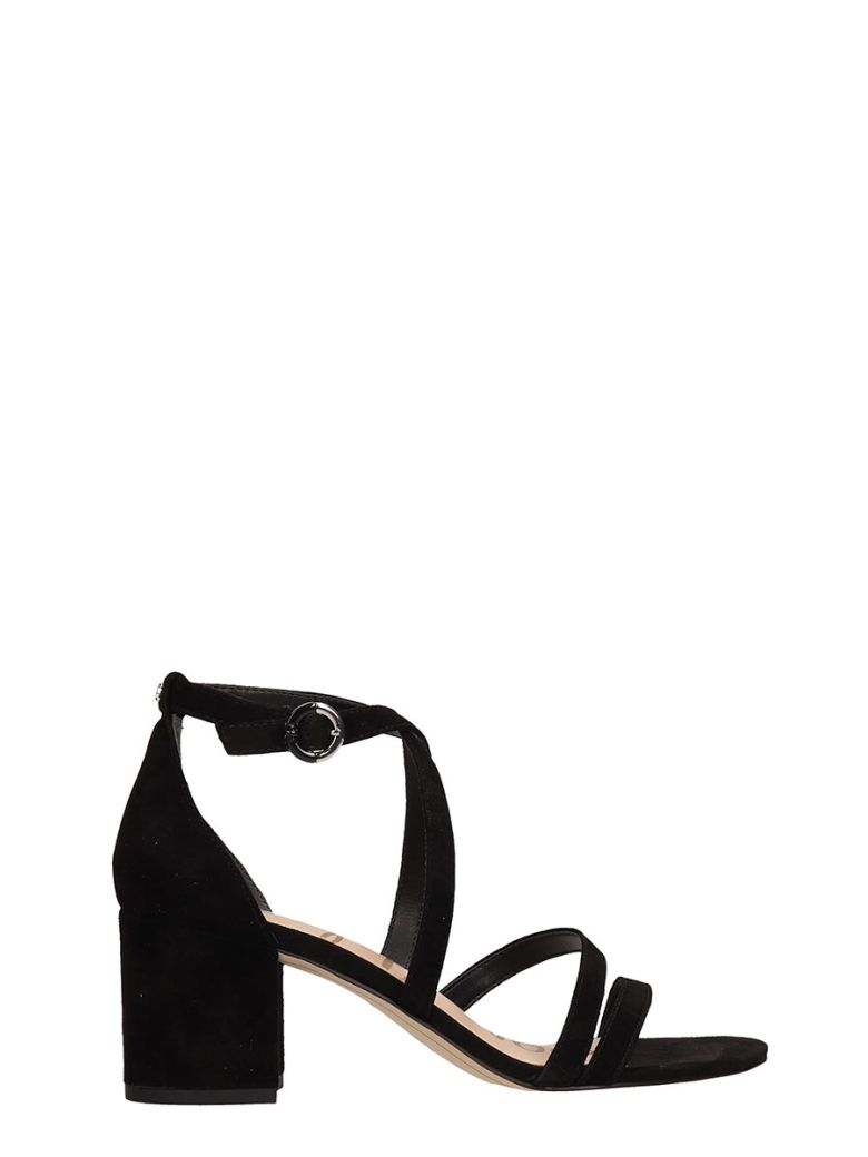 Sam Edelman Black Suede Leather Sandals - Black