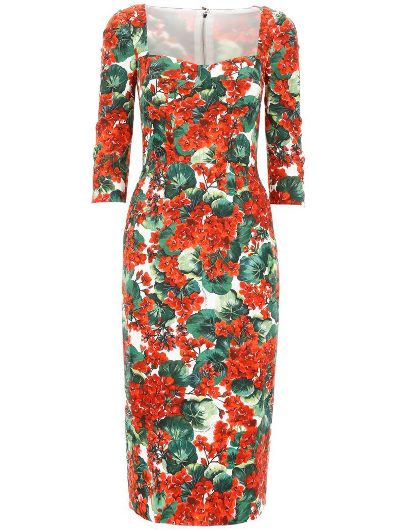 Dolce & Gabbana Portofino Print Dress - GERANI FDO BCO NAT (Red)