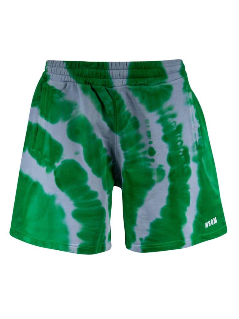 MSGM Logo Print Shorts - Green/Blue