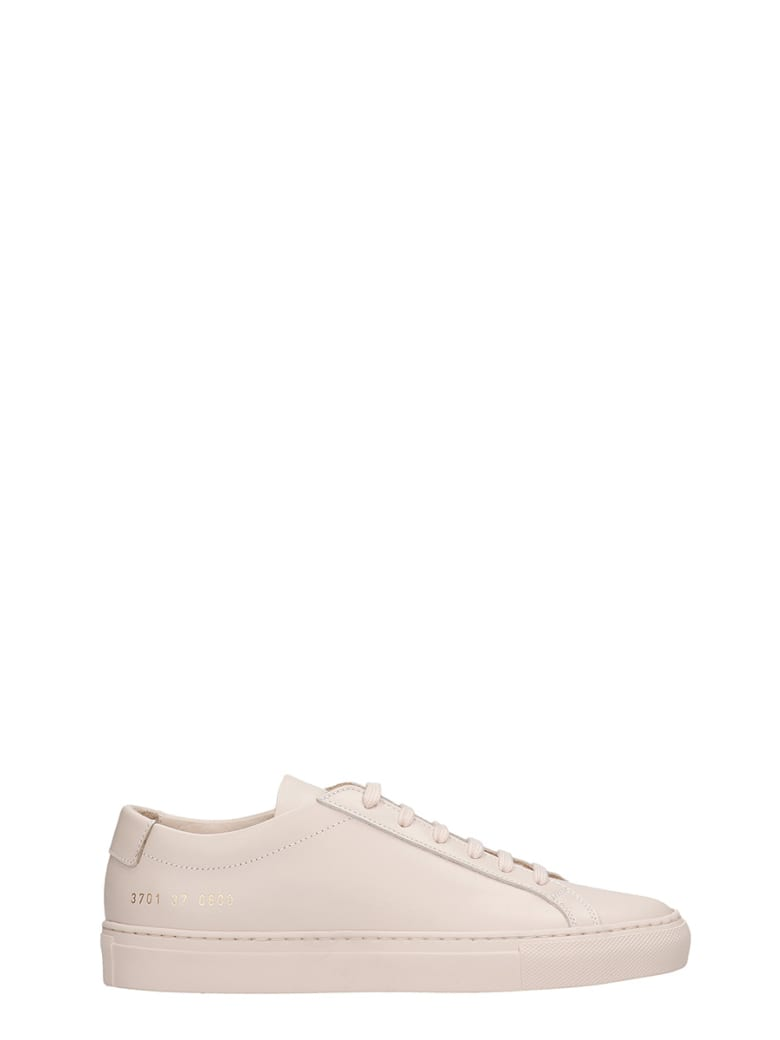 Common Projects Achille Sneakers In Powder Leather - powder