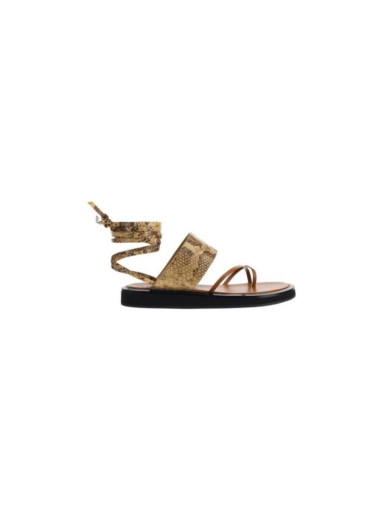 Paris Texas Brooklyn Sandals - Honey