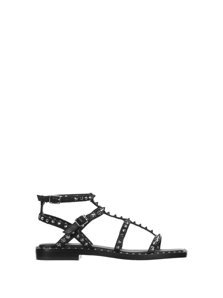 Ash Sandals With Studs - NERO