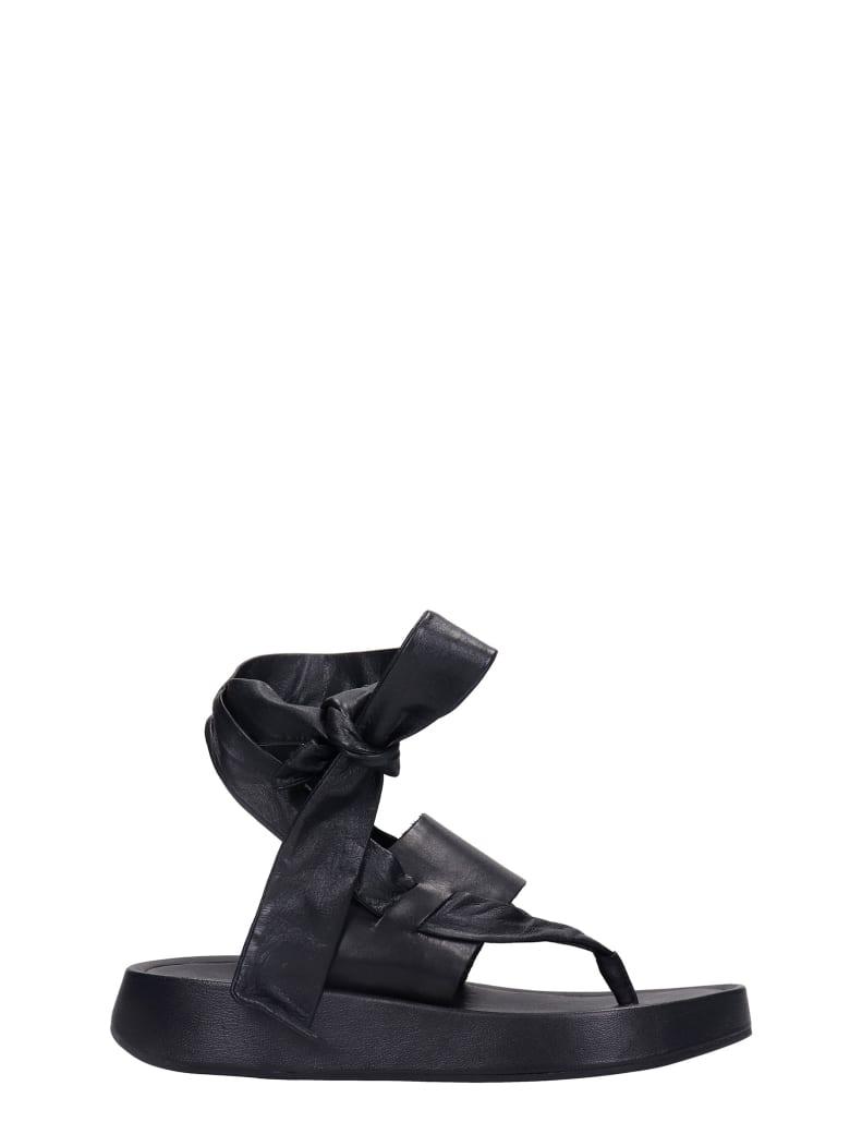 Ash Vince 01 Flats In Black Leather - black