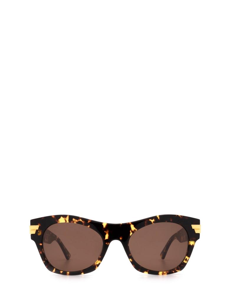 Bottega Veneta Bottega Veneta Bv1103s Havana Sunglasses - Havana