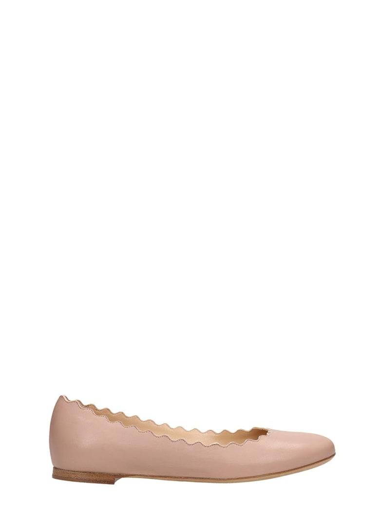 Chloé Lauren Ballet Plain Leather Ballet - C Pink Tea