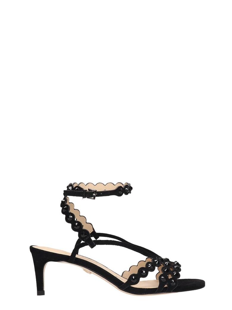 Lola Cruz Black Suede Sandals - black