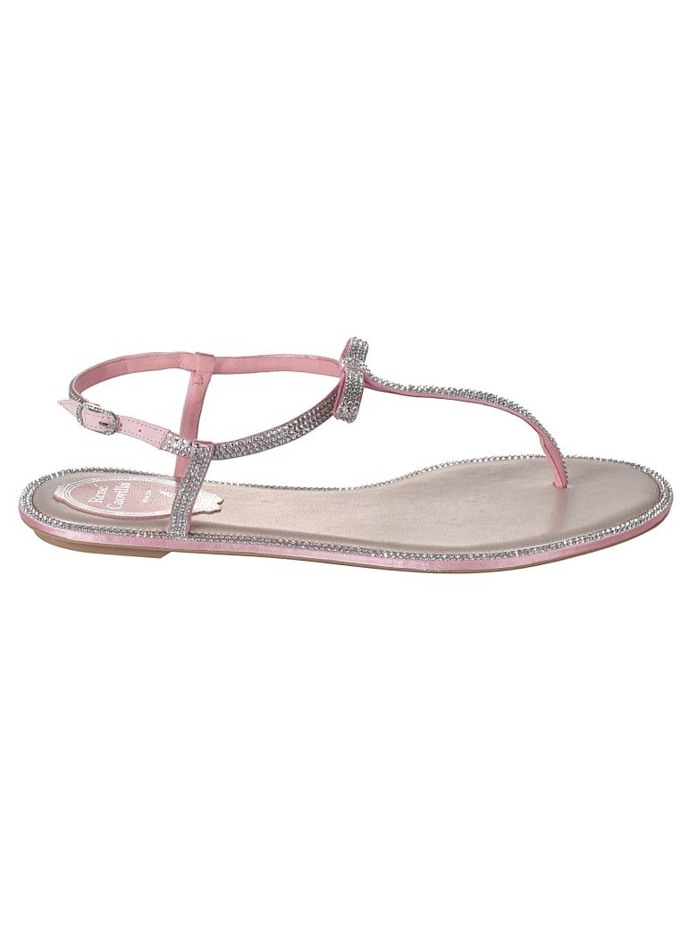 René Caovilla Bonnie Flat Sandals - Pink