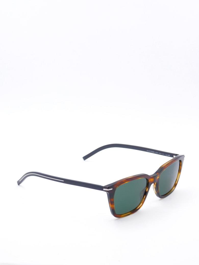 Christian Dior BLACKTIE266S Eyewear - /qt Brwhvbeistr