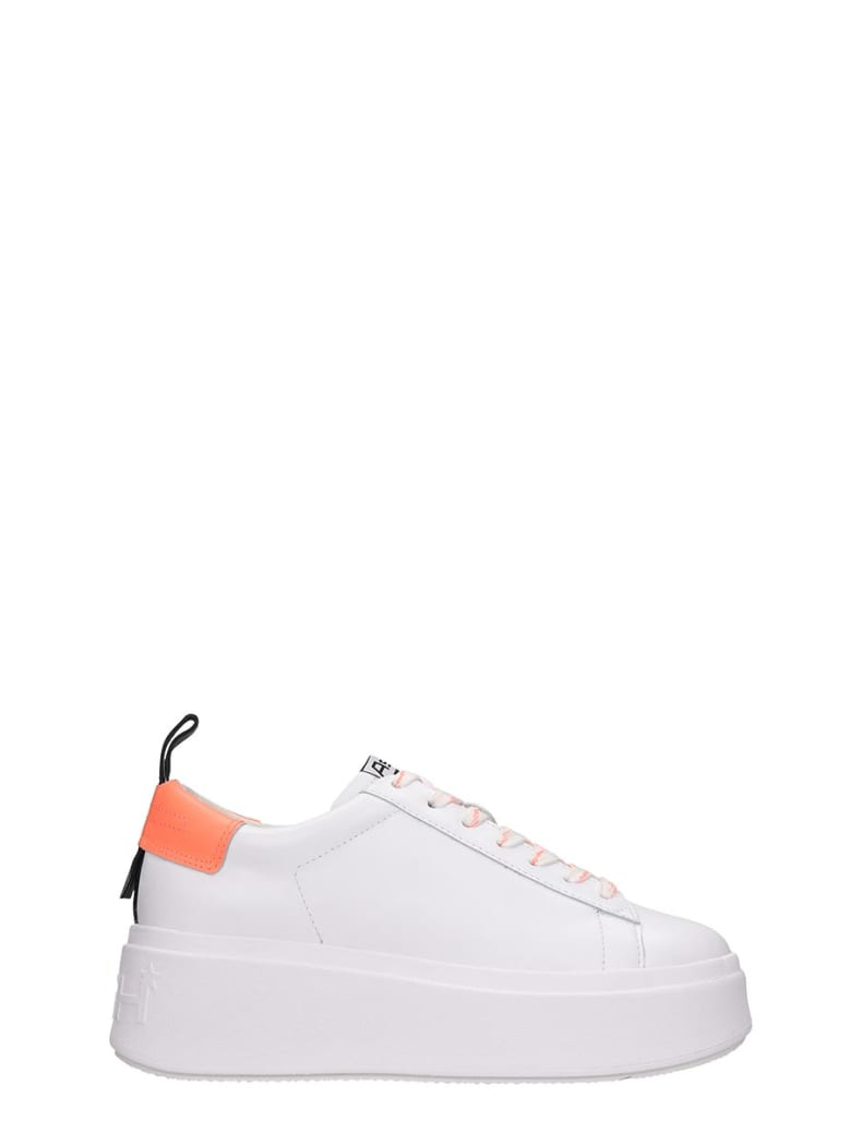 Ash Moon02 Sneakers In White Leather - white