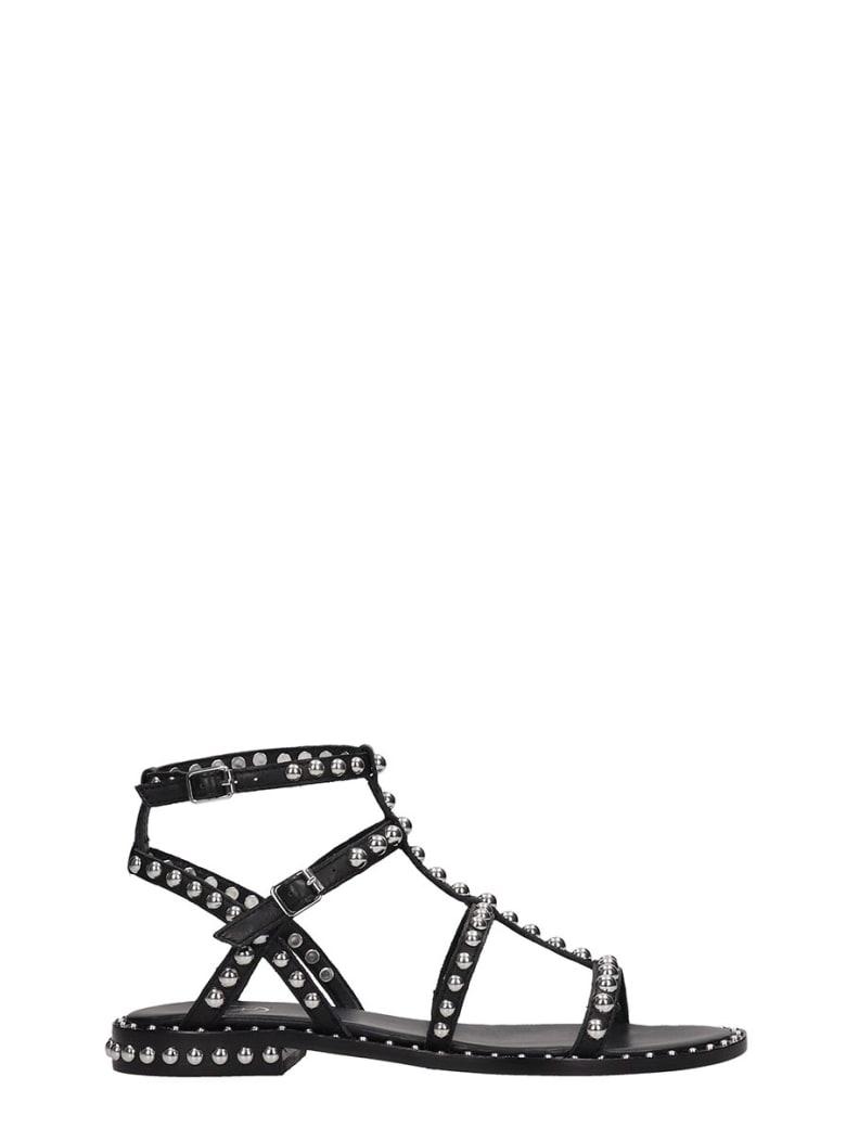 Ash Precious 01 Flats In Black Leather - black