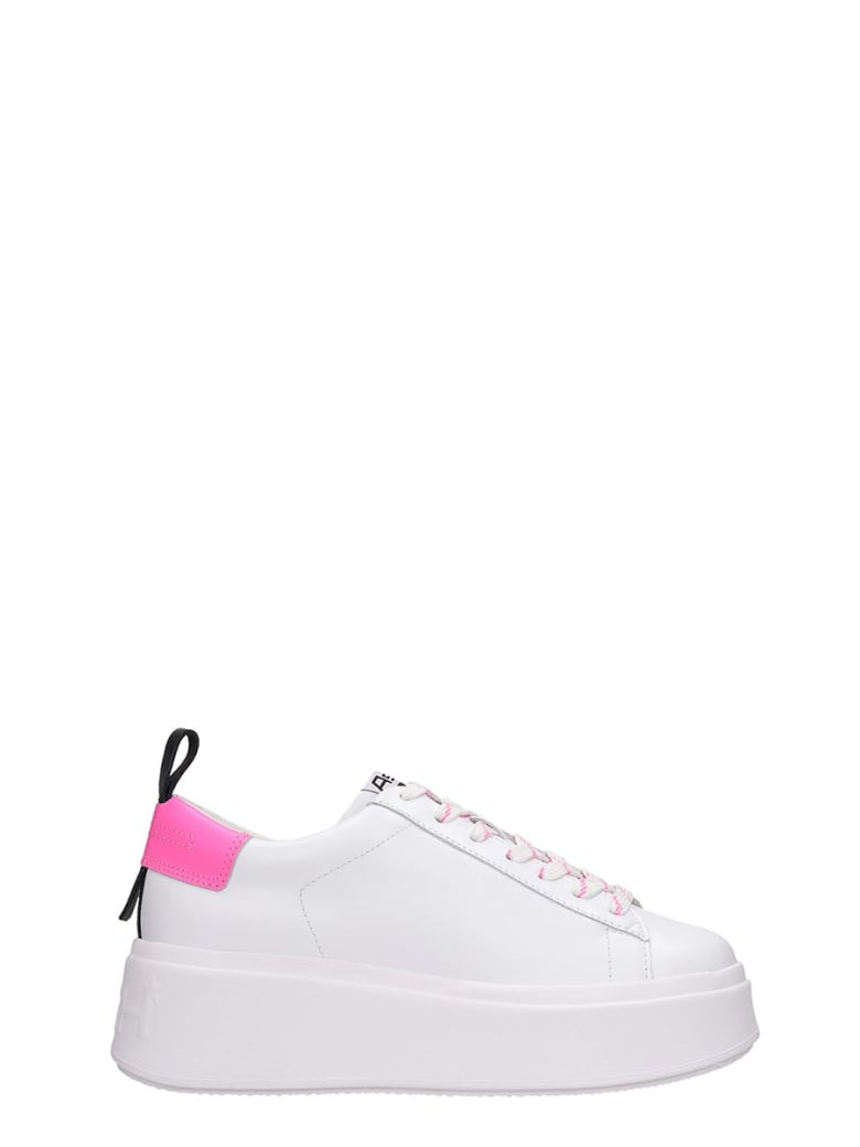Ash Moon05 Sneakers In White Leather - white
