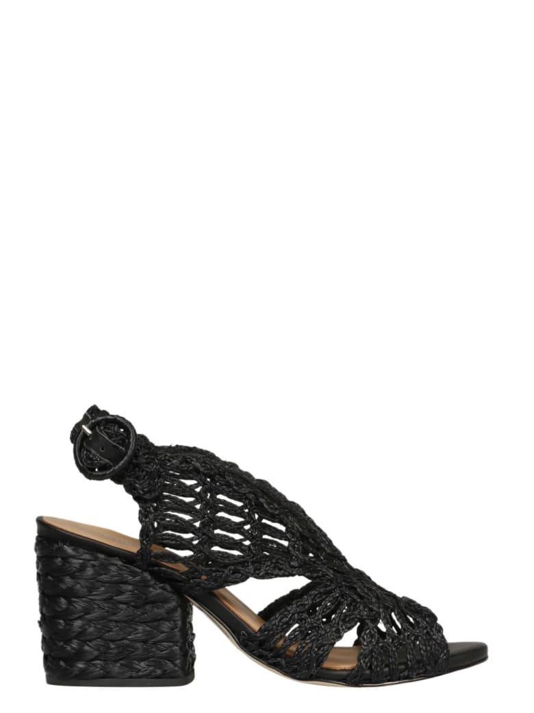 Paloma Barceló Shoes - Black