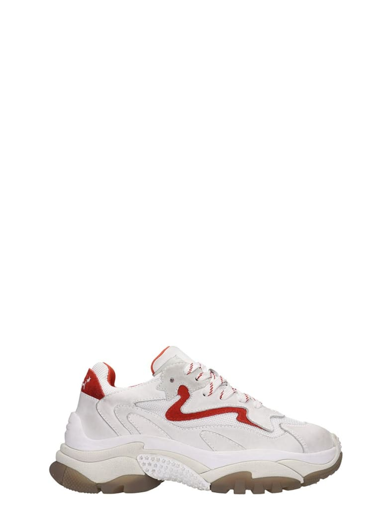 Ash Addict 03 Sneakers In White Tech/synthetic - white