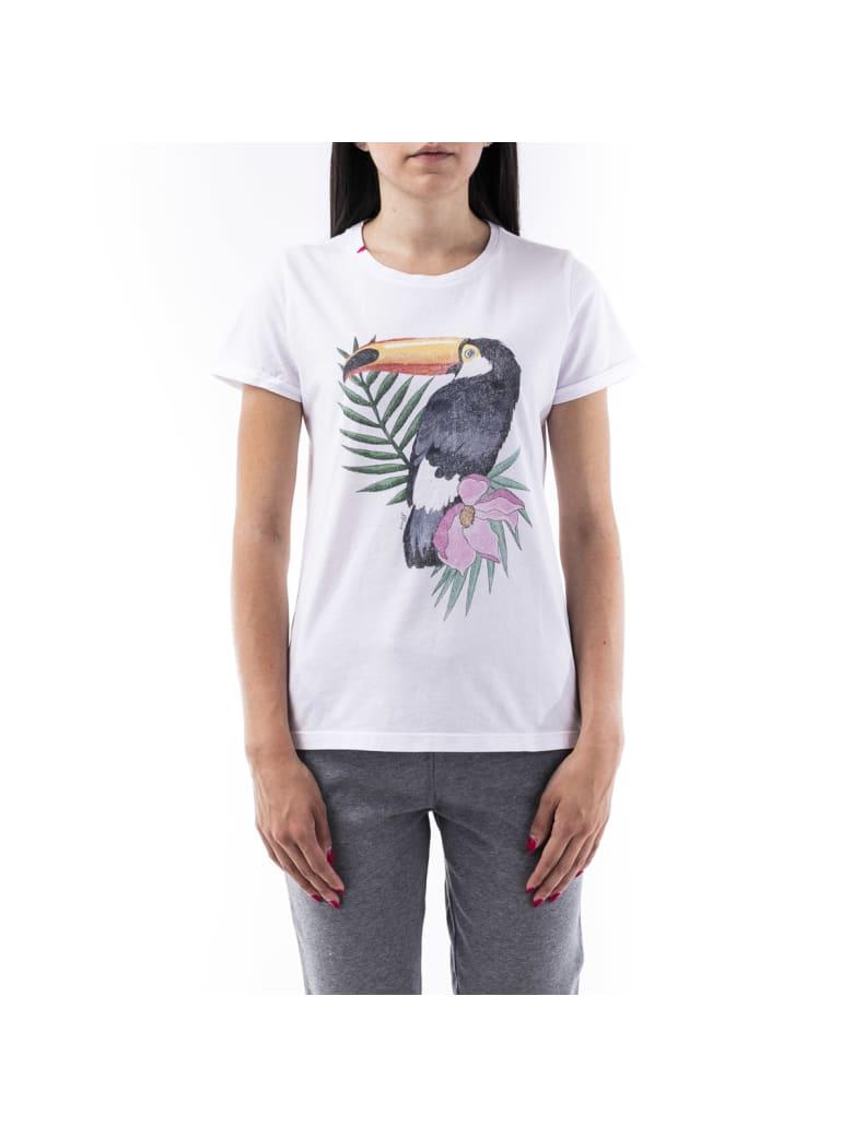 Sun 68 Sun68 Cotton T-shirt - WHITE - BLACK