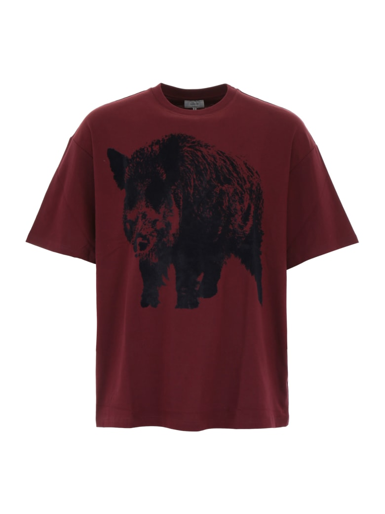 Lanvin Printed T-shirt - BURGUNDY (Red)