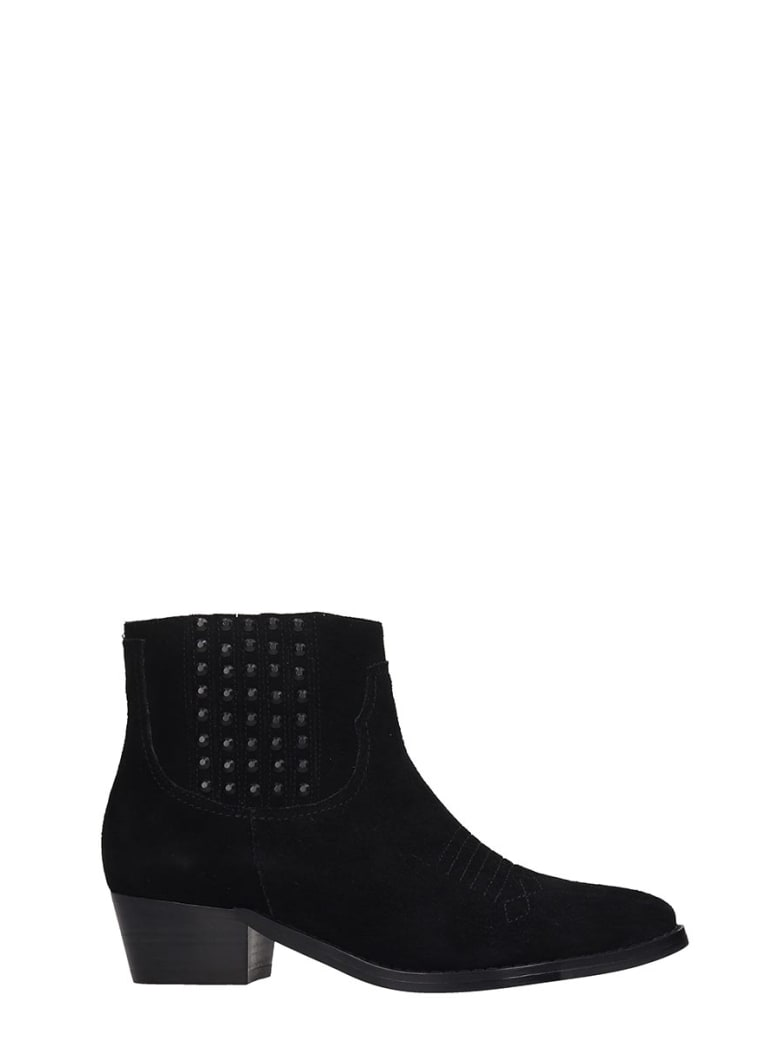 Bibi Lou Ankle Boots In Black Suede - black
