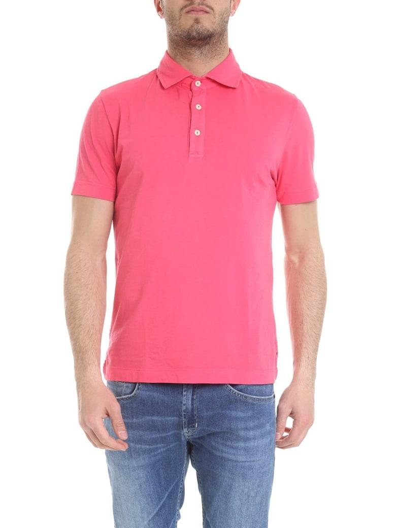 Drumohr Polo Cotton - Pink