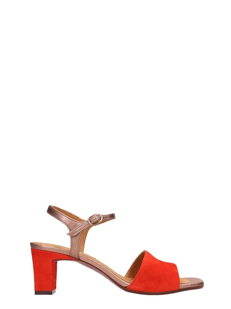 Chie Mihara Orange Suede And Leather Sandals - orange