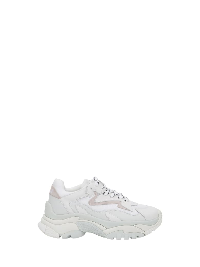 Ash Addict Sneaker - Bianco