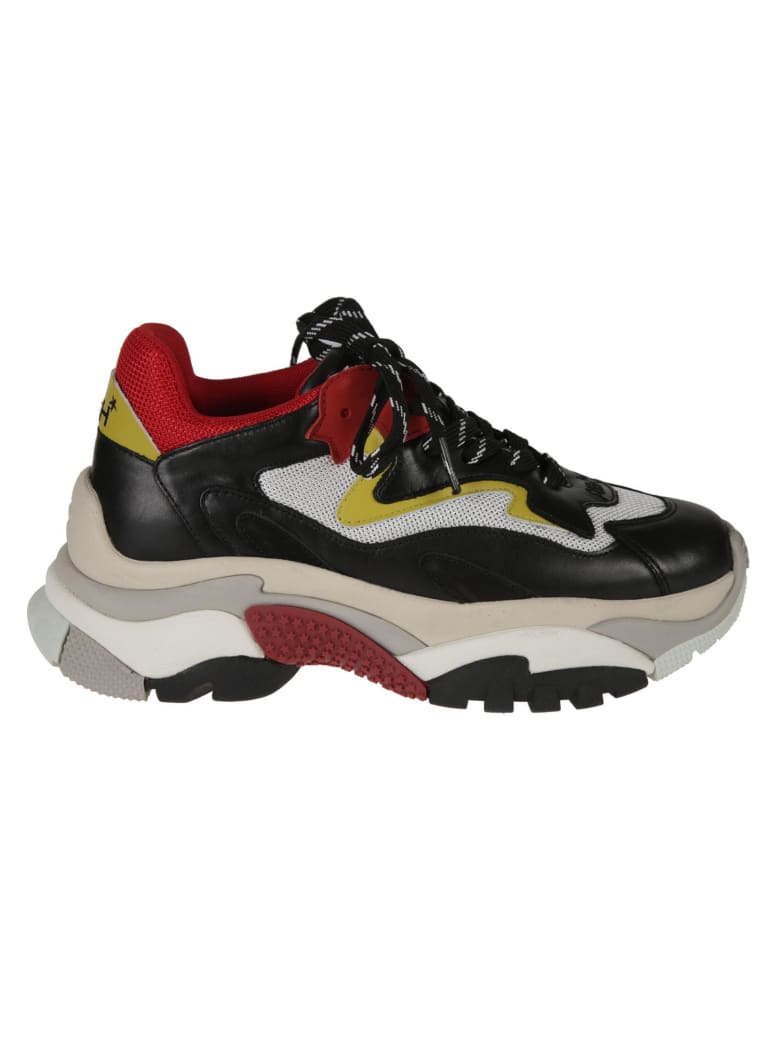 Ash Addict Leather Sneakers - Multicolor