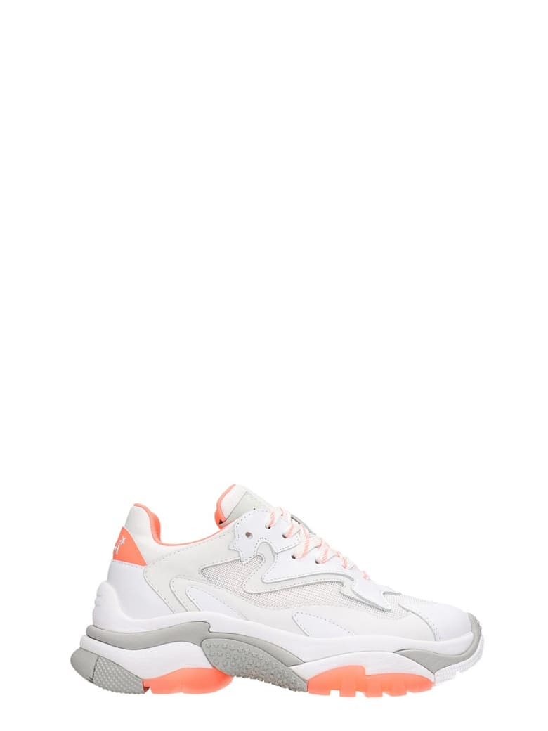 Ash Addict 07 Sneakers In White Tech/synthetic - white