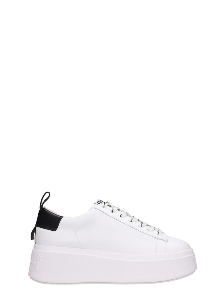 Ash Moon07 Sneakers In White Leather - white