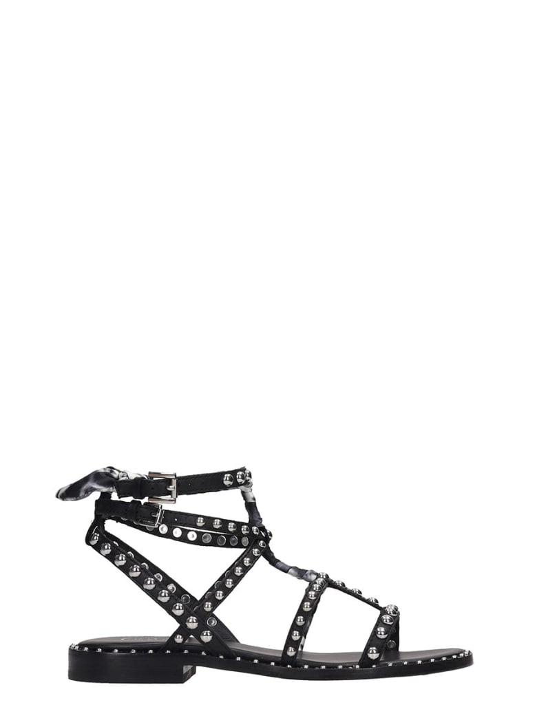 Ash Patchouli 01 Flats In Black Leather - black