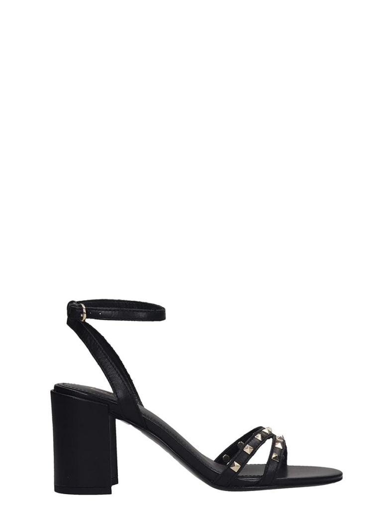 Ash Janis 01 Sandals In Black Leather - black