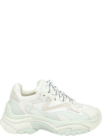 Ash Addict Sneakers In White Leather