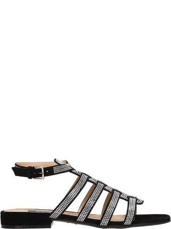 Sergio Rossi Black Suede Sr Demetra Flat Sandals