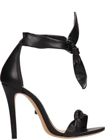 Schutz Knot Black Calf Leather Sandals
