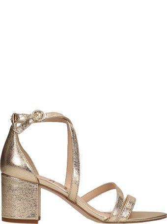 Sam Edelman Gold Leather Sandals