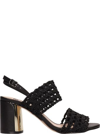 Bibi Lou Black Canvas Sandals