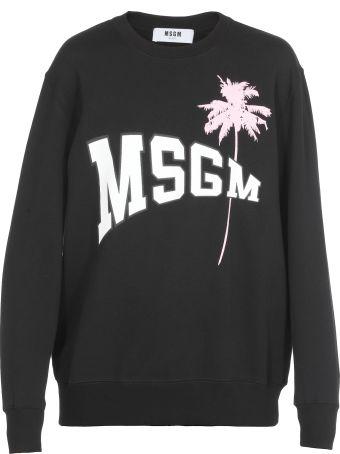 MSGM Cotton Sweatshirt
