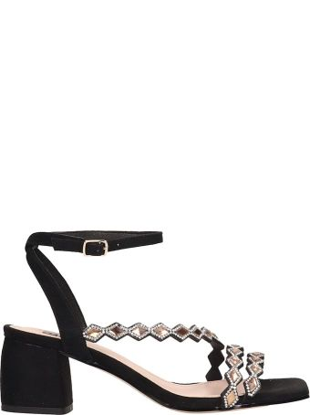 Bibi Lou Black Suede Sandals