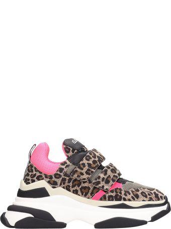 Elena Iachi Fell Running Sneakers