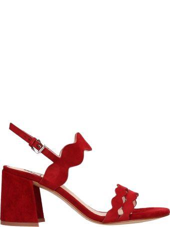 Bibi Lou Red Suede Sandal