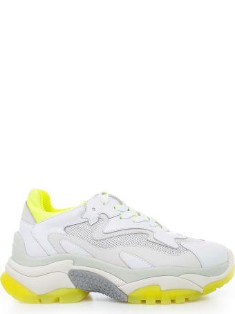 Ash Mesh Panel Sneakers