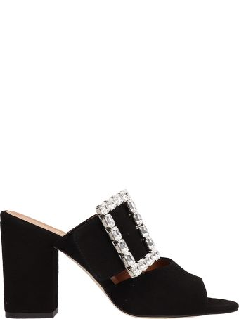Paris Texas Black Suede Mule Sandals