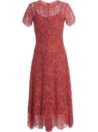 Proenza Schouler Dress Laces
