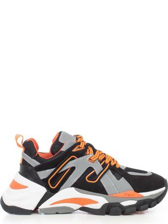 Ash Flash Dark Sneakers