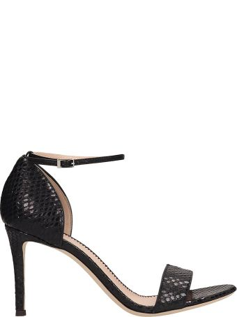 Giuseppe Zanotti Black Leather Sandals