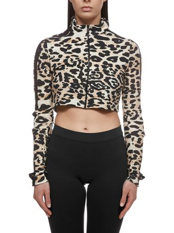 Paco Rabanne Leopard Cropped Top