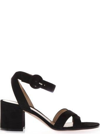 Gianvito Rossi Black Suede Sandals With Chunky Heel