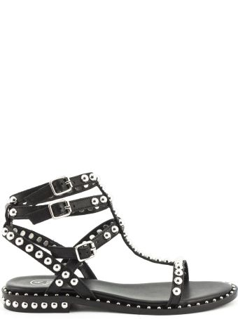 Ash Play Low Sandal In Black Leather