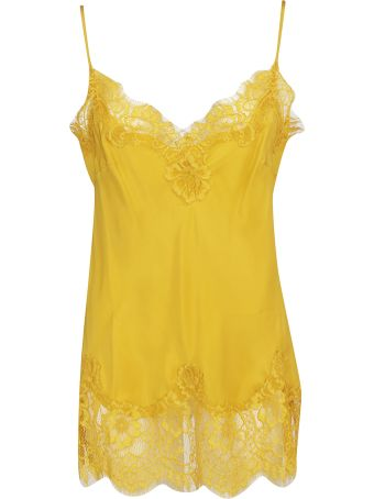 Gold Hawk Floral Lace Top