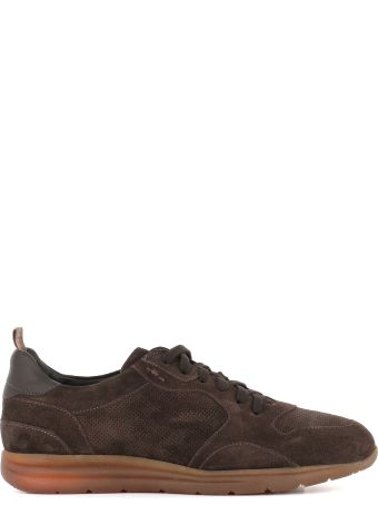 "Alexander Hotto Sneakers ""56110"""